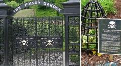 jardin,poison,angleterre,effrayant
